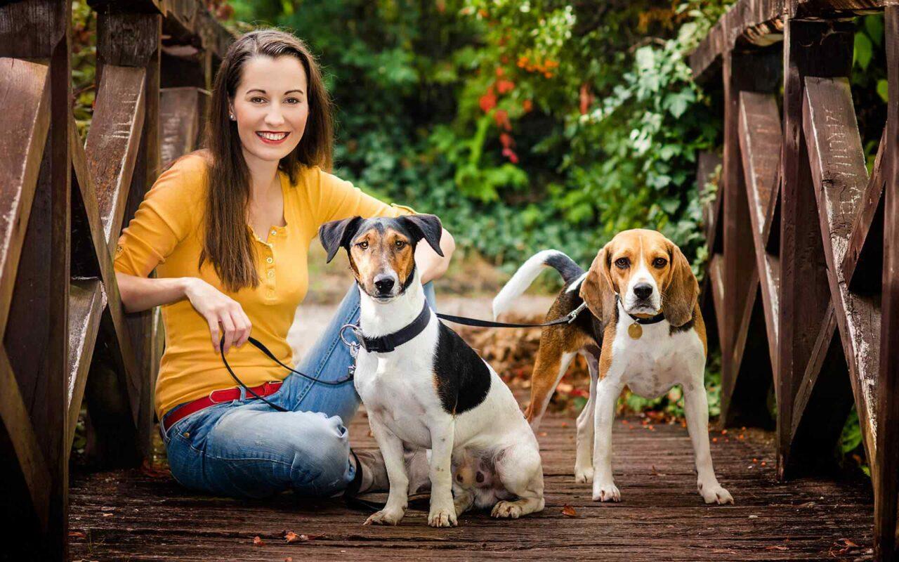 http://www.dog-adoptions.com/wp-content/uploads/2018/09/post_02-1280x800.jpg